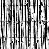 Загородка Wattle Стоковая Фотография RF