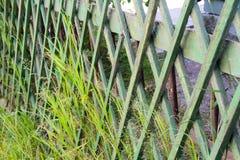 Загородки зеленым парком стоковая фотография rf
