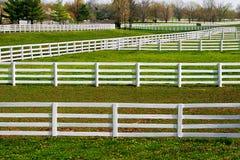 Загородки Galore Стоковая Фотография