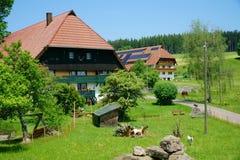 2 загородного дома в черном лесе Стоковое Изображение