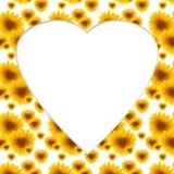 Заготовка поздравительной открытки солнцецвета цветка картины Стоковые Фотографии RF