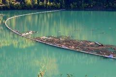 Заграждение журнала на озере в Британской Колумбии, Канаде 01 плотник Стоковая Фотография RF