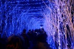 ЗАГРЕБ, ХОРВАТИЯ - 26-ОЕ ДЕКАБРЯ , 2017: Рождество украсило городок Загреба во время декабря Стоковые Изображения