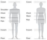 загрунтовка тела женская мыжская бесплатная иллюстрация