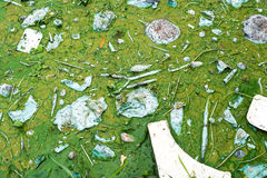 Загрязнение воды чувствуя не хороший стоковые изображения rf