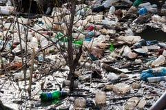 Загрязнение воды стоковые фотографии rf