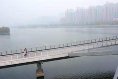 загрязнение фабрики предпосылки воздуха голубое Стоковые Изображения