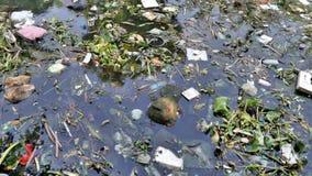 загрязнение Стоковая Фотография