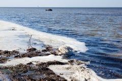 Загрязнянные воды берега - вымирание и заболевание стоковые изображения