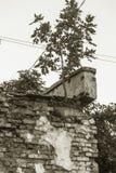 Загубленная стена здания Покинутый к ненужным домам разрушьте Самоуничтожение покинутых зданий Схематически, cri стоковые фотографии rf