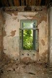 загубленная комната Стоковые Фотографии RF