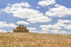 Загубленный дом голубя самана между полем хлопьев и пасмурным bl Стоковое Изображение