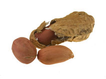 задавленная раковина арахисов Стоковое Фото