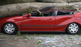 задавленный автомобиль Стоковое фото RF