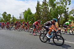 Задействуя Ла Vuelta España Peleton стоковая фотография rf