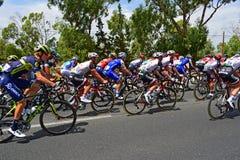 Задействуя Ла Vuelta España Peleton стоковые фото