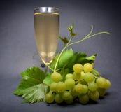 заднее черное стеклянное белое вино Стоковые Фото
