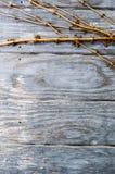Задние круглые деревянные панели с золотыми лозами стоковое фото rf