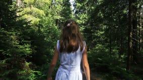 Задний взгляд маленькой девочки идя в лес на солнечный день акции видеоматериалы