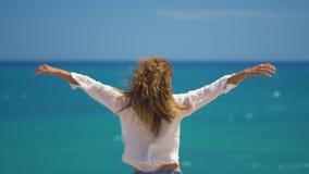 Задний взгляд молодой женщины с ветром в ее волосах поднимая ее руки поверх скалы над красивым морем Свобода концепции акции видеоматериалы