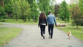 Задний взгляд молодые люди подруги и парня идя собака в парке города в лете, человеке и женщине держит видеоматериал