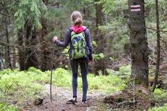 Задний взгляд тонкой атлетической белокурой туристской девушки hiker с ручкой a Стоковые Изображения RF