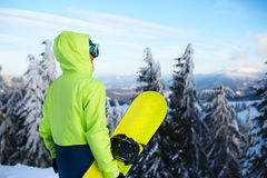 Задний взгляд snowboarder стоя с его доской на держателе перед backcountry встречей freeride в человеке леса стоковые фото
