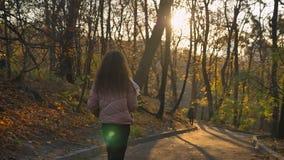 Задний портрет курчавой маленькой девочки идя dreamily в осенний парк стоковое фото rf