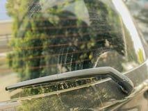 Задний счищатель лобового стекла Стоковая Фотография RF
