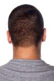 задняя головка укомплектовывает личным составом детенышей Стоковое Фото
