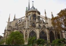 задняя сторона buttresses notre dame собора Стоковые Фото