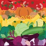Задняя часть радуги овощей Стоковое Изображение