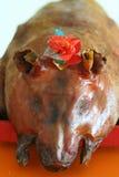 зажаренная в духовке свинья Стоковое Изображение RF