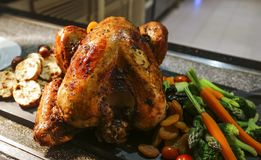 Зажаренная в духовке Турция для благодарения и рождества Стоковое Фото
