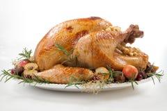 Зажаренная в духовке Турция с яблоками самосхвата над белизной стоковая фотография