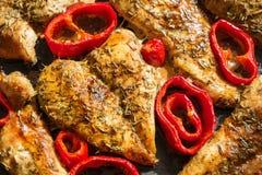 Зажаренная в духовке грудь цыпленк цыпленка с травами и перцами Стоковая Фотография