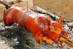 Зажаренная в духовке свинья Стоковые Фотографии RF