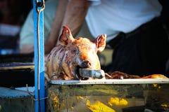 зажаренная в духовке свинья стоковые изображения rf