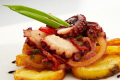 Зажаренная еда обедающего ресторана осьминога зажаренная морепродуктами, Стоковые Фото