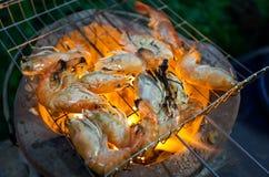 Зажаренная креветка или креветка ожога на пламенах Стоковые Фотографии RF