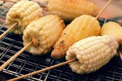 Зажаренная мозоль, горячий стержень кукурузного початка Стоковое фото RF