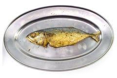 Зажаренная скумбрия на алюминиевом длинном блюде Стоковые Изображения RF