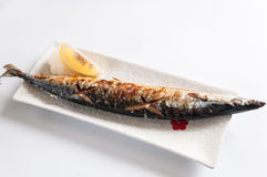 Зажаренная Тихая океан сайра стоковые фотографии rf