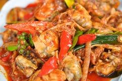 Зажаренная лягушка spices Таиланд Стоковое Фото