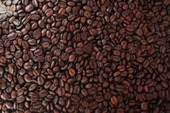 Зажаренное в духовке кофейное зерно в будочке продаж Стоковое Изображение RF