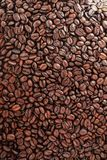 Зажаренное в духовке кофейное зерно в будочке продаж Стоковое Фото