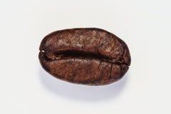 Зажаренное в духовке кофейное зерно изолированное на белой предпосылке Стоковая Фотография