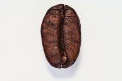 Зажаренное в духовке кофейное зерно изолированное на белой предпосылке Стоковые Изображения