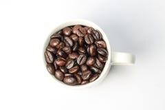 Зажаренное в духовке кофейное зерно Стоковая Фотография RF