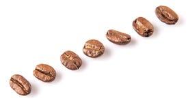 Зажаренное в духовке кофейное зерно XI Стоковое Изображение RF